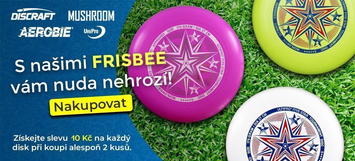 frisbee banner